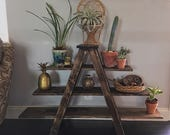 A Frame Shelf Display Ladder Rustic Plant Stand