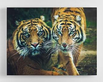 Tiger Couple - Tiger Canvas Wall Art - Tiger Art, Tiger Canvas, Tiger Photography Art, UK Art, Tiger Art, Home Decor