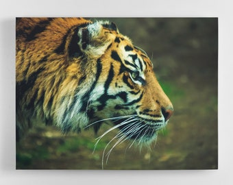 Prowling Tiger - Tiger Canvas Wall Art - Tiger Art, Tiger Canvas, Tiger Photography Art, UK Art, Tiger Art, Home Decor