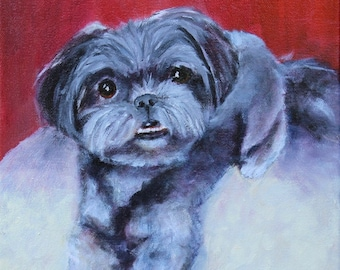 Shitzu Original OIl Painting Dog Portrait Giclee Prints Notecards Magnet Canvas Wrap Gifts Carol Lytle Free Shipping Lytlebitartistic # 177