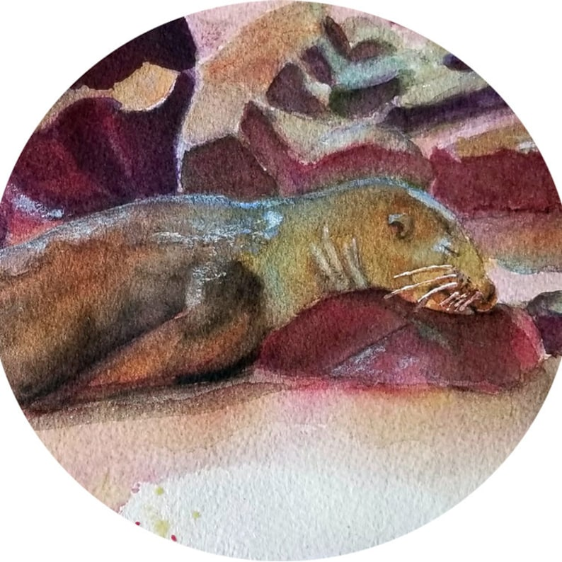 Galapagos Sea Lion Pup Painting Original Watercolor Art Giclee Prints Note Cards Glass Magnet Canvas Wrap Free Shipping Carol Lytle #97