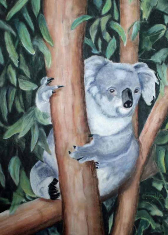Koala Bear Original Art Pastel Painting Original Pastel Art image 0