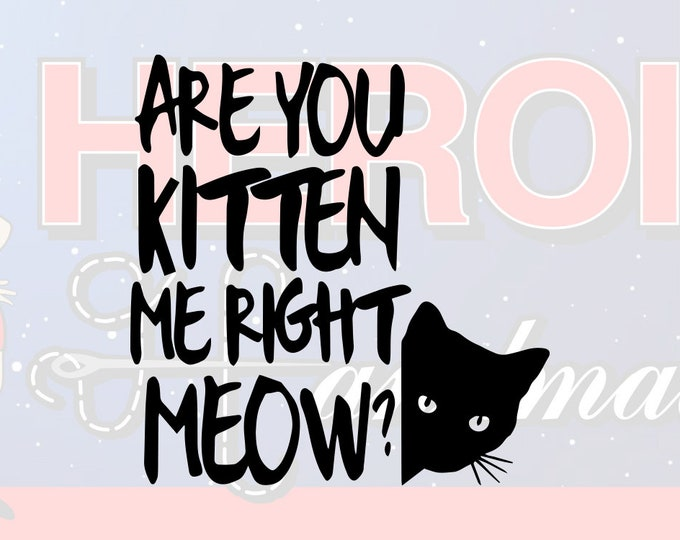 """4""""+ Are You Kitten Me Right Meow Adhesive Vinyl Decal"""