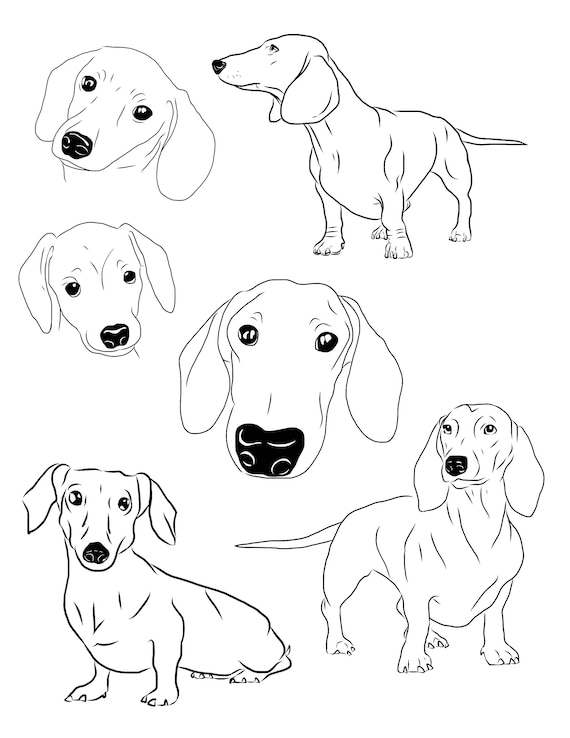 Dachshund Clipart Set Of 6 Dachshund Download Printable