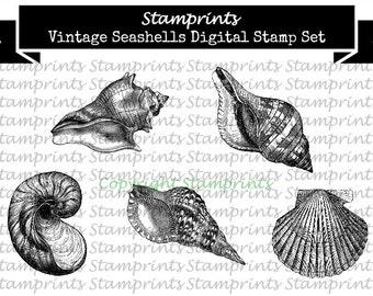 Digital Stamp Set - Vintage Seashells (by Stamprints).Printable Vintage Images.PaperCraft.Mixed Media