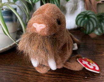 TY:     Paul, February 23, 1999      Free Delivery. Excellent condition Beanie Baby, with original tags.