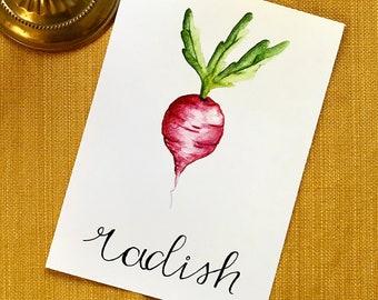 5x7 Radish Illustration Print