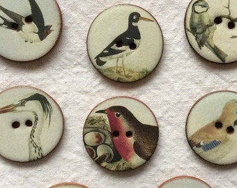 Set Of 20 Colourful Parrot Buttons Handmade Cardigans Arts And Crafts Brand New