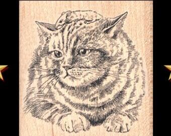 CAT Rubber Stamp, Calico Cat Rubber Stamp, Cat Stamp, Kitty Rubber Stamp, Kitty Stamp, Cat Lover Gift, Feline Stamp, Feline Rubber Stamp
