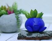 Oddish Planter, Pokemon Planter, Succulent Planter, Air Planter Many Colors