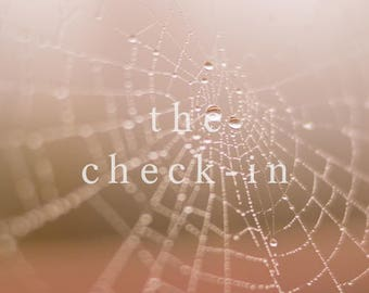 The Check-In: Written Report
