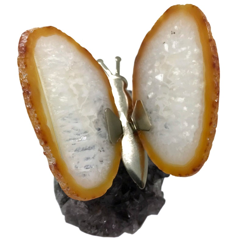 5f444f42974 Natural Agate Butterfly Twin Spirit Agate Butterfly Wings on