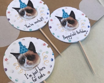 Grumpy Cat Cupcake Toppers - Printed, cut, assembled, shipped to you!