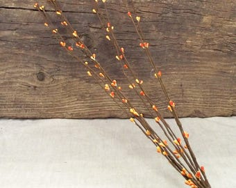 "16"" Pip Berry Stems in Orange - Package of 10 Stems"