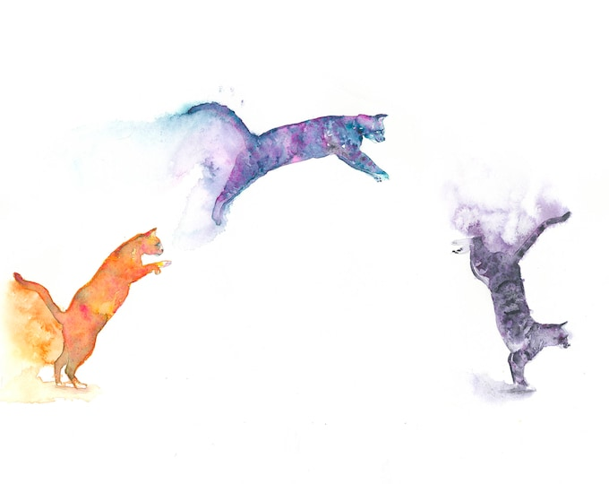 Free Felines