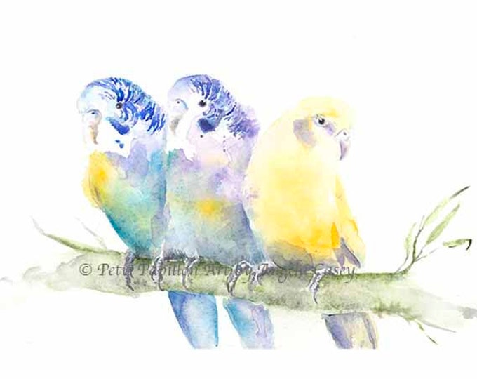 Parakeet Watercolor Bird print Budgie watercolor art Bird lover gift Parrot art print Colorful Parrot watercolor bird wall art parrot decor