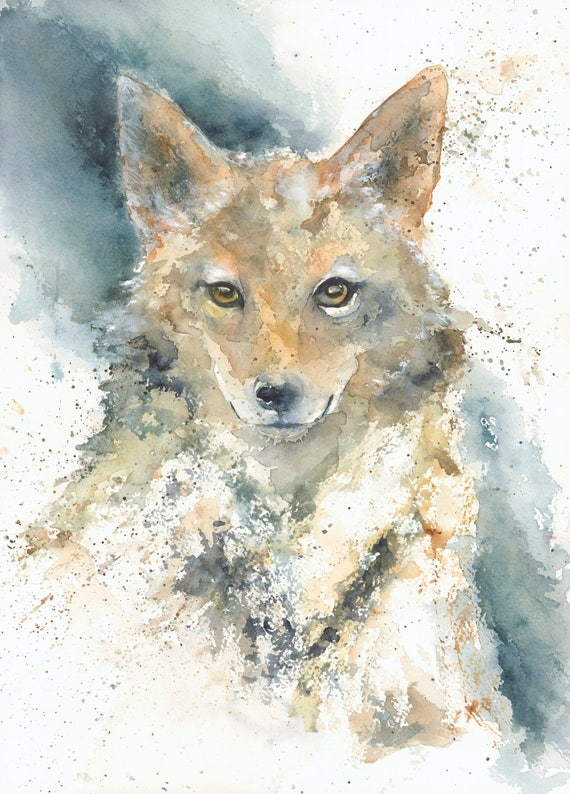 Coyote Art Coyote Print Coyote Watercolor Coyote Painting