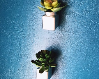 Hanging planter - Office Decor - wall hanging - succulent planter