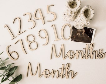 Monthly Photo Props, Milestone Marker, Baby gift, Baby milestone, Baby monthly milestone, New Baby Gift, Babys First Year, Milestone Set