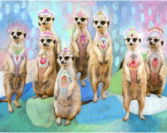 Carnivale Meerkats print