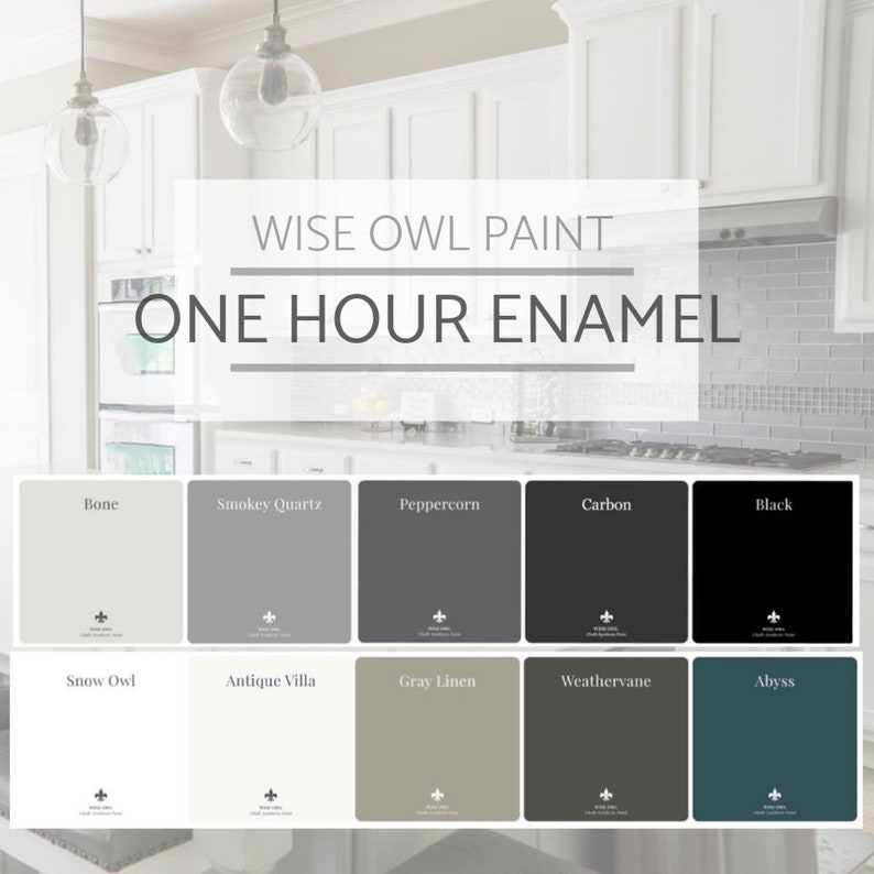 Awesome New Wise Owl One Hour Industrial Strength Enamel Paint In 16 Popular Colors Furniture Cabinet Door Paint Free Shipping Home Interior And Landscaping Oversignezvosmurscom