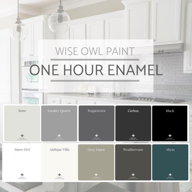 Surprising New Wise Owl One Hour Industrial Strength Enamel Paint In 16 Popular Colors Furniture Cabinet Door Paint Free Shipping Download Free Architecture Designs Embacsunscenecom