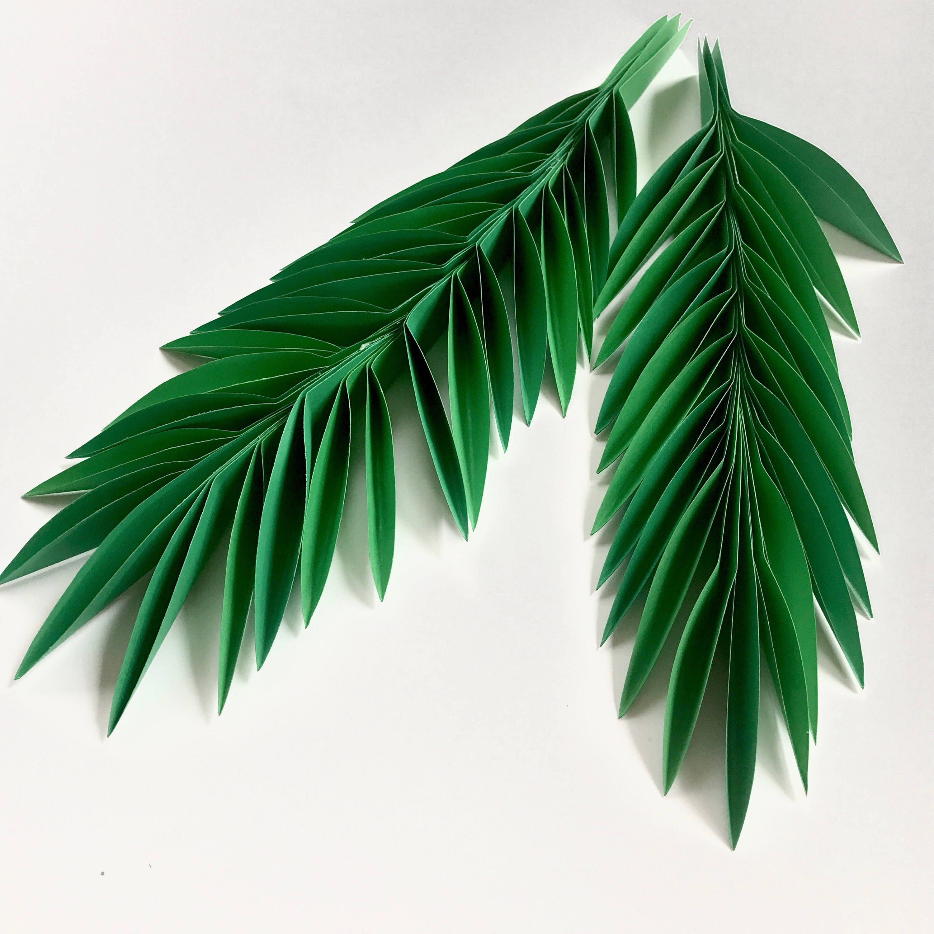 Paper leaves green leaves leaves cut outs pack of 3 leaves zoom mightylinksfo