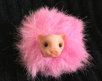 Pygmy Puff *Available for Immediate Adoption!*