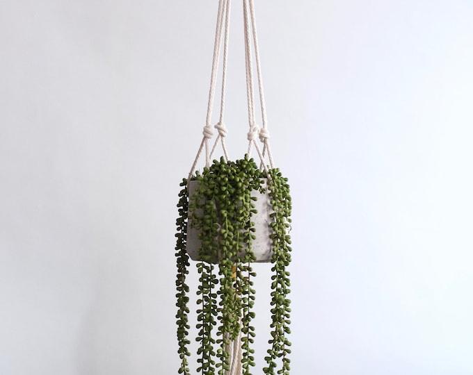 Modern Rope Plant Hanger