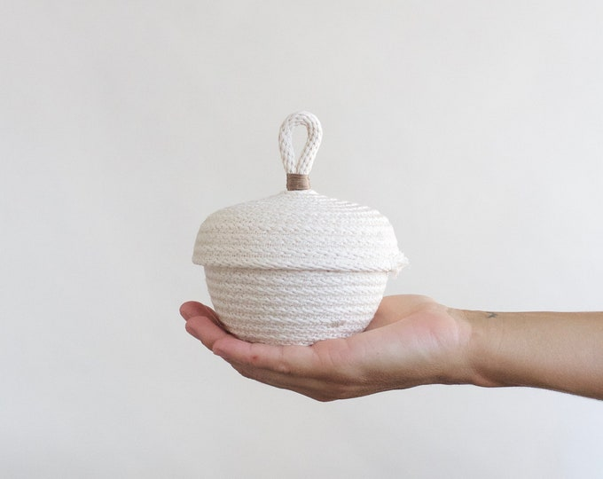 Tiny Storage Basket with Lid