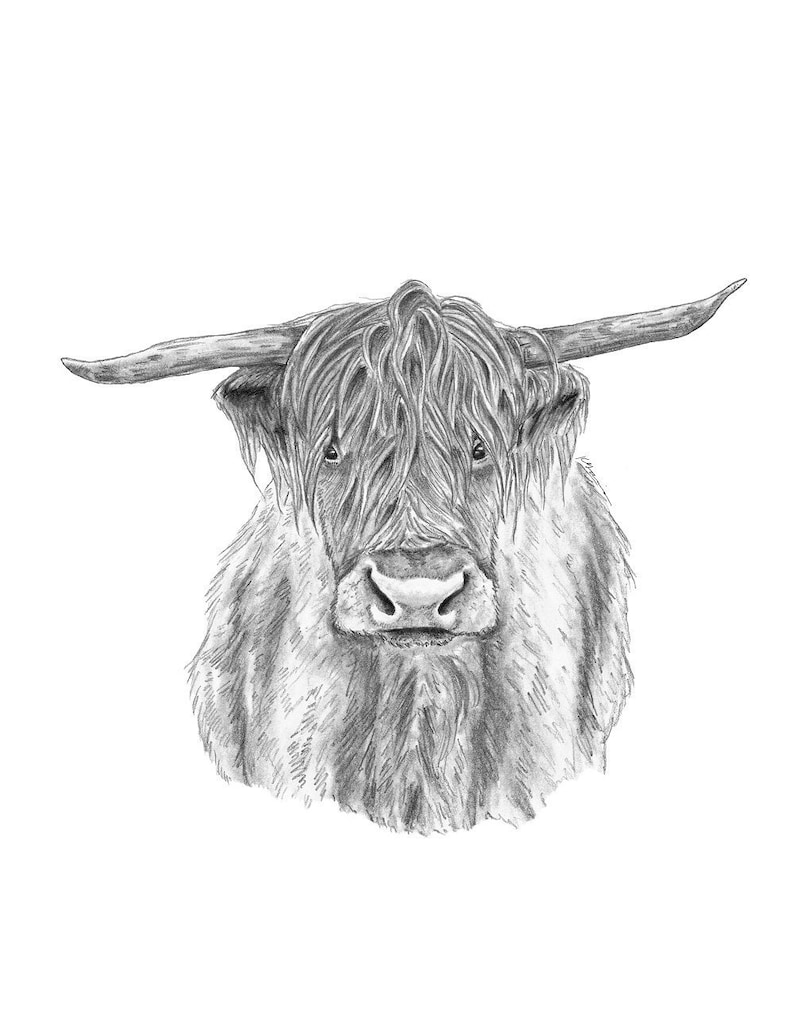 376fd308336 Cow Print Highland Cow Art Cow Decor Black White Animal