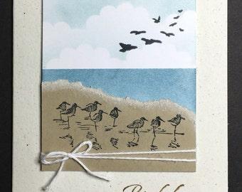 Seagulls Birthday Greetings