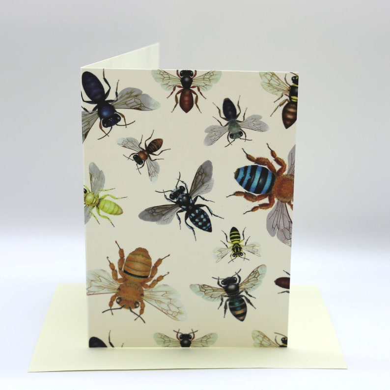 4-pack Australian Native Bee cards image 0