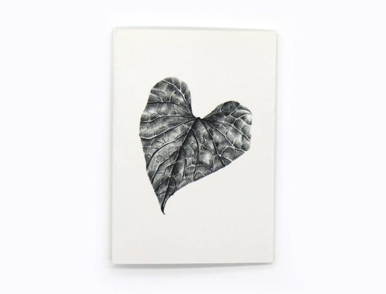 6-pack sweet potato vine leaf gift cards image 0