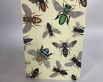 Australian native bees on yellow cards x 4