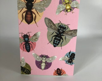 Australian native bees on pink cards x 4