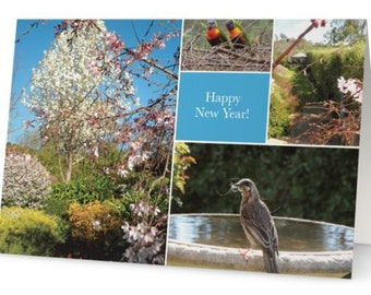 pack of 10 australian new year cards original photography and design high quality glossy print