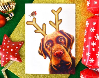 dog christmas card pack rudog christmas card set labrador christmas cards funny animals rudolph xmas card pack holiday card set dog antler