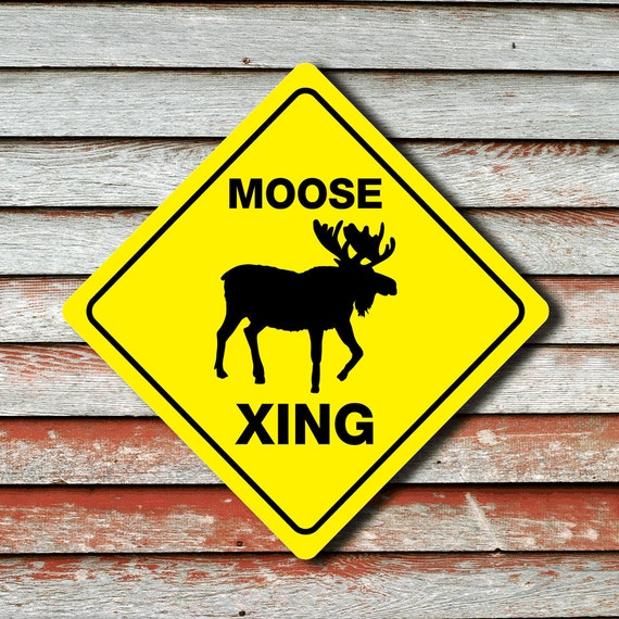 moose crossing funny novelty crossing sign 12x12 etsy