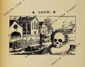 Gothic Graveyard Skull Memento Mori - Digital Download Image Transfer Pillow Burlap Iron-On Teeshirt Fabric Scrapbooking Digital Stamp