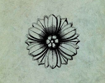 Flower - Antique Style Clear Stamp