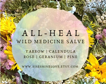 Wild Medicine Salve