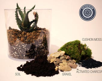 Cushion Moss Terrarium Kit / Soil Mix / Activated Charcoal / Beach Pebbles  / Cushion Moss by Geodesium