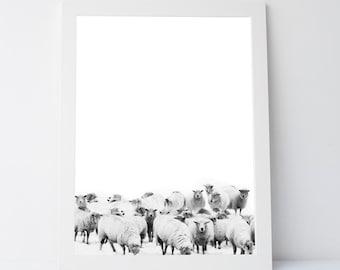 Black White Sheep Prints, Printable Gift, Black White Wall Prints, Sheep wall art,sheep art,sheep prints, black white wall art, modern print