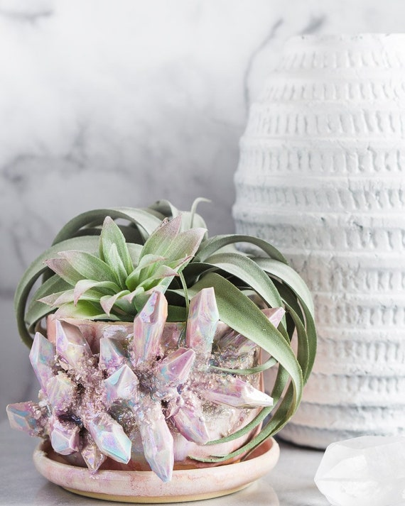 Made To Order: White Opal Succulent Pot W/ Attached Dish by Etsy