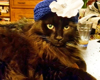 Custom Fancy Turban Cat Hat, perfect for Christmas/Holidays