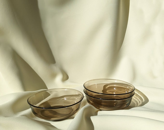 Vintage Made in France Retro Glass Small Serving Dining Dish Bowl Set of 3 - Smokey Brown