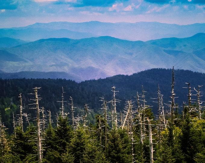Smoky Mountain Evening Blue