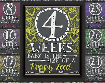 Chalkboard Bi Weekly Pregnancy Signs, Pregnancy Signs, BiWeekly Pregnancy Chalkboard, Pregnancy, Pregnancy Photo Prop, Pregnancy Gift