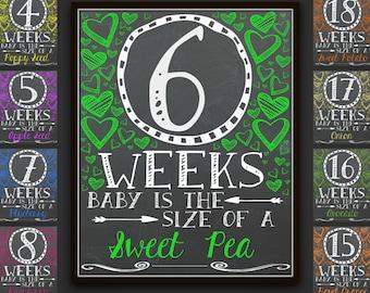 Chalkboard Weekly Pregnancy Signs, Pregnancy Signs, Weekly Pregnancy Chalkboard, Weekly Pregnancy, Pregnancy Photo Prop, Pregnancy Gift, Art